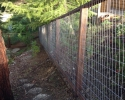 Welded Wire Deer Fence